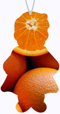 Geur Sinasappel